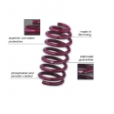 Vogtland Lowering Springs 6cyl (lowers 1.8in)