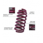 Vogtland 2013+ Fusion/MKZ 30mm lowering springs